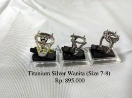 titansillver01