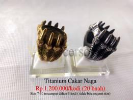 ring cincin Titanium cakar naga / elang