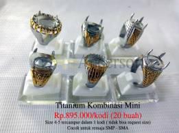 Titanium Mini