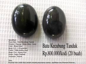 Batu Kecubung Tanduk Rp.800.000/kodi (20 buah)