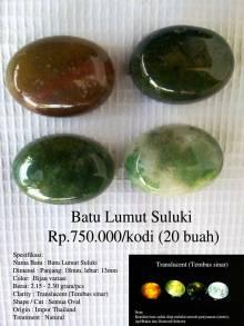 Batu Lumut Suluki Rp.750.000/kodi (20 buah)