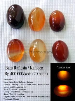 Batu Raflesia / Kaladen Rp.400.000/kodi (20 buah)