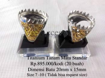 Titanium Tanam Mata Standar