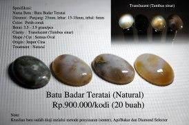 Batu Badar Teratai (Natural) Rp.900.000/kodi (20 buah)