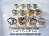Rhodium Jumbo Tanam Rp.495.000/kodi