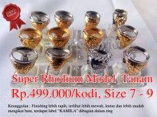 Super Rhodium model Tanam Rp.499.000/kodi