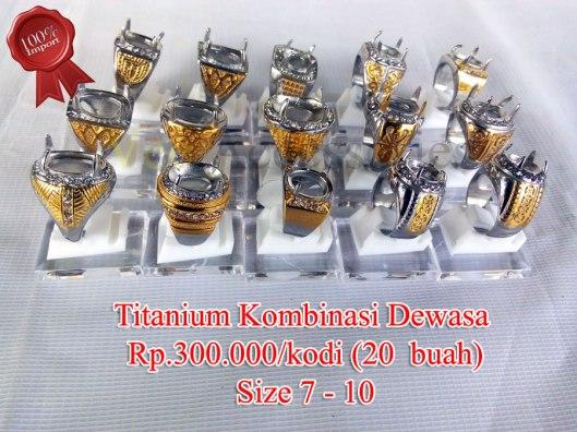 titanium-kombi-07102015