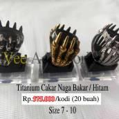 titan-cakar-naga-hitam-k.30