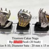 titanium-cakar-naga-kombi