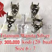 titanium-silver-wanita-30.1
